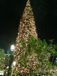 It's snowing at the Americana❄❄❄#Christmastime #familymovienight pic.twitter.com/cji5Erj6