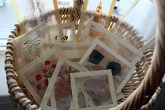 Make light catchers using clear contact paper, natural materials and masking taping.