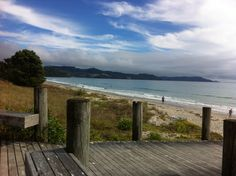 Day 79 -being lucky enough to go to the  best beaches in the world. This is matarangi. Amazing.