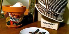 Fabric Chevron Terracotta Pot.