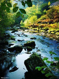 Ingleton Falls, North Yorkshire