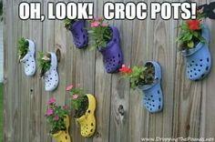 Croc pots