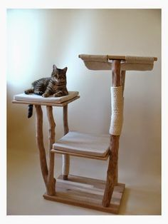 Paris To Go: Chat Perché: Plastic-Free Artisanal French Cat Furniture