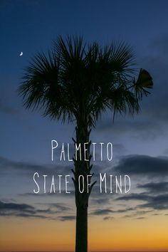 Palmetto State of Mind. Shem Creek Sunset.  © Carolina Photosmith