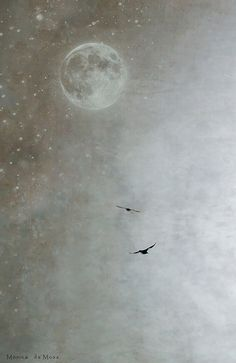 I will dream of places to go to and I will dream that you will come with me in the white moon light