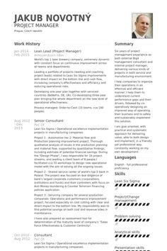 International Project Manager Resume Example  Private