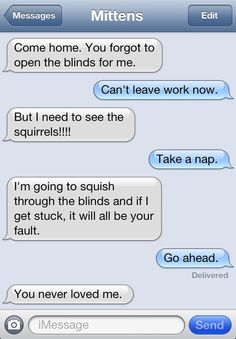 """Texts From Mittens"" Is The Best Blog About Text Messages From A Cat Ever"