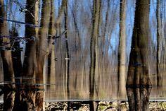 Underworld by Claude Charbonneau on Underworld, Reflection, Photography, Painting, Art, Art Background, Photograph, Fotografie, Painting Art