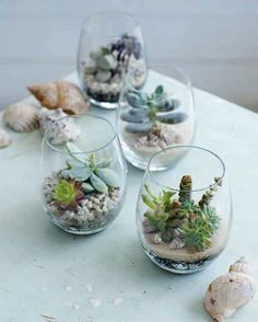 25+ Gorgeous Gardens So Tiny They'll Fit In The Palm Of Your Hand. Wine glass garden... Great centerpiece idea!