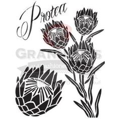 Stencils Protea Stencil - Granny B's Old Fashioned Paint Protea Art, Protea Flower, Stencil Patterns, Stencil Designs, Sewing Patterns, Lino Art, Australian Flowers, Laser Art, Zentangle Drawings