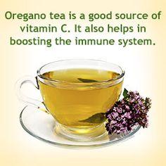 Health benefit of oregano tea