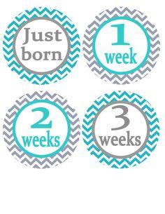 Chevron Baby Stickers, Baby Milestone Stickers. Photo Prop, Baby Shower 12 Month Monthly Onesie Stickers Baby Boy Baby Girl b14 on Etsy, $9.00