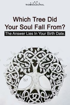 Which Tree Did Your Soul Fall From? The Answer Lies In Your Birth Date. - https://themindsjournal.com/which-tree-did-your-soul-fall-from-the-answer-lies-in-your-birth-date/