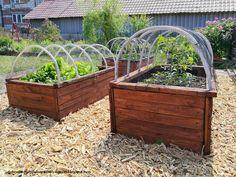 płodozmian i uprawa współrzędna Raised Beds, Flora, Garden Ideas, Gardening, Diy, House, Composters, Balcony, Bricolage