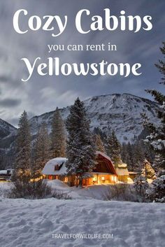 12 Dreamy Yellowstone Cabins You Can Rent for your Next Vacation 11 Dreamy cabins you should rent in Yellowstone for your next vacation. When you visit Yellowstone make sure you stay at a cozy cabin in the woods. Yellowstone Cabins, Yellowstone Vacation, Visit Yellowstone, Yellowstone Winter, Wyoming Vacation, Tennessee Vacation, Wisconsin Vacation, Places To Travel, Travel Destinations