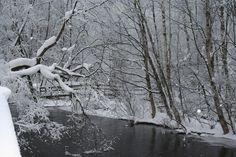 Talvinen Tourujoki / Wintery Tourujoki Finland, Country, Rural Area, Country Music