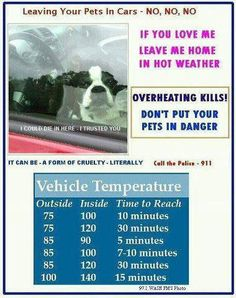 When it is hot outside, DO NOT LEAVE YOUR PETS IN A CAR!!!