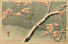 Takahashi Hiroaki, Bush Warbler and Snowy Plum Tree (ca.1930)
