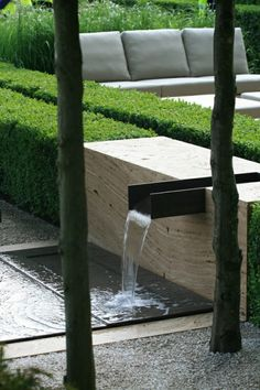 jardin avec décor auqatique