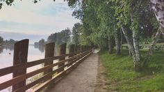 Morning Stroll - Fort Langley, BC