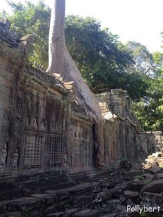 Angkor Wat (Day 2) – living at the fullest