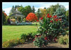 The wedding location... Hidden Lake Gardens :)