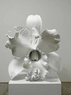 Marc Quinn - The Archaeology of the Baroque (2012)