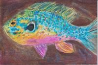 ATCsforALL - Gallery - Uploads Posted By debs913 Sunfish, watercolor