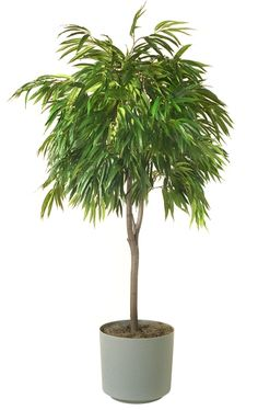 """Artificial Olive Plant Fruit 28/"""" Branch Leaves Home Nordic Style Plants Stem IN9"""