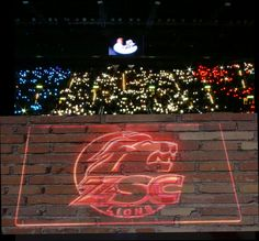 Zsc Ice Hockey, Lions, Neon Signs, Lion