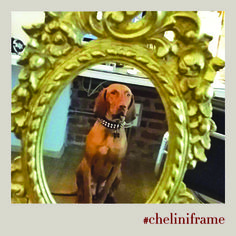 A new kind of super model for #cheliniframe