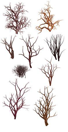 Trees And Shrubs Stock by zummerfish on DeviantArt