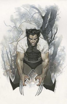 Wolverine 1 cover by Olivier Coipel