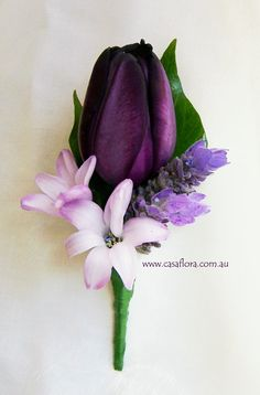 Queen of the Night tulip buttonhole with hyacinths and lavender.