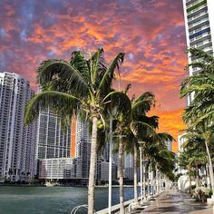 Miami's magical sky after the storm  by @gigicoloma #HurricaneMatthew