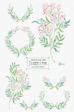 Jasmine. Botanical art. Floral Elements wreath by OctopusArtis