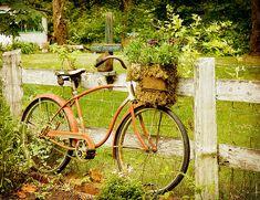 https://flic.kr/p/6TkMxj   This Old Bike