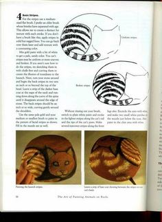 pintar en piedra - Marleni - Álbuns da web do Picasa..cat ,rock painting tutorial!
