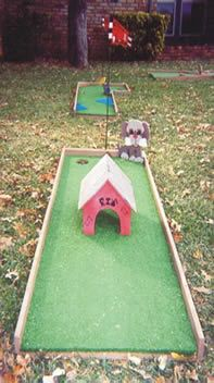 PLLLLAAAYY MINI GOLF!!  Well, I guess you could do this in the backyard...