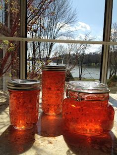 Hot Pepper Jelly (so good with cream cheese & crackers!)