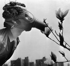 On the first Earth Day - April 2013 - a college student in New York City sniffs a magnolia blossom through a gas mask. Earth Day History, First Earth Day, Photocollage, We Are The World, White Photography, Inspiring Photography, Climate Change, Vintage Photos, Illustration