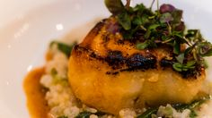 Miso glazed sea bass with grilled scallion risotto, baby green beans ...