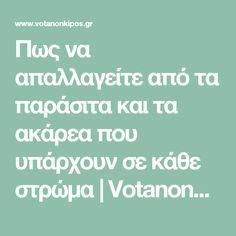 Πως να απαλλαγείτε από τα παράσιτα και τα ακάρεα που υπάρχουν σε κάθε στρώμα | VotanonKipos.gr