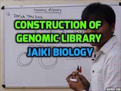 Jaiki biology: Construction of cDNA Library