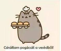 Zoé Rácz's pusheen magyar😉 images from the web Gato Pusheen, Pusheen Love, Logo Gato, Simons Cat, Nyan Cat, Kawaii Doodles, Unicorn Cat, Wallpaper Iphone Cute, Cute Cartoon Wallpapers