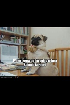 I think this will be Bam Bam after Louis' visit..... Lol!