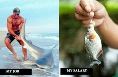 job vs pay - Dump A Day Funny Images, Funny Photos, Best Funny Pictures, Humor Videos, Videos Funny, Funny Jokes, Hilarious, Funny Minion, Fun Funny