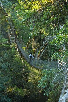 Pictures - Reserva Amazónica | Inkaterra