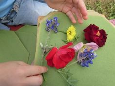 A flower press can be a fun project. Once dry, you can laminate the dried blossoms into bookmarks for gifts.