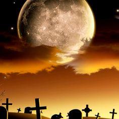 Halloween Stories, Halloween 2020, Halloween Crafts, Halloween Makeup, Happy Halloween, Halloween Costumes, Scary Wallpaper, Shoot The Moon, Image Please